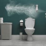 Best Toilet Freshener