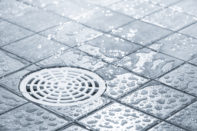 Best Shower Drains