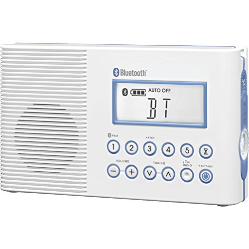 Sangean H202 Portable AM/FM/Weather Alert
