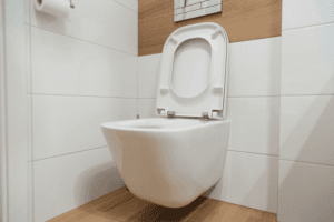 Best Wall Hung Toilet