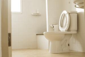 Best Water Saving Toilets