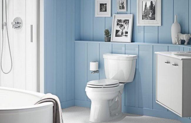 Best Kohler Toilets