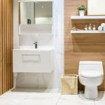Woodbridge Toilet Reviews